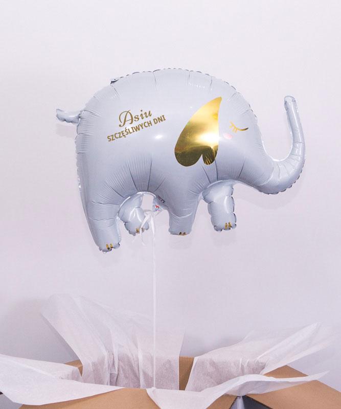 Balon z helem w pudełku słoń na szczęście